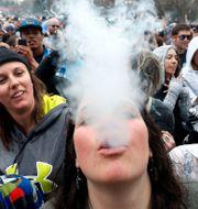 Den årliga marijuanafestivalen i Denver. Brennan Linsley / TT / NTB Scanpix