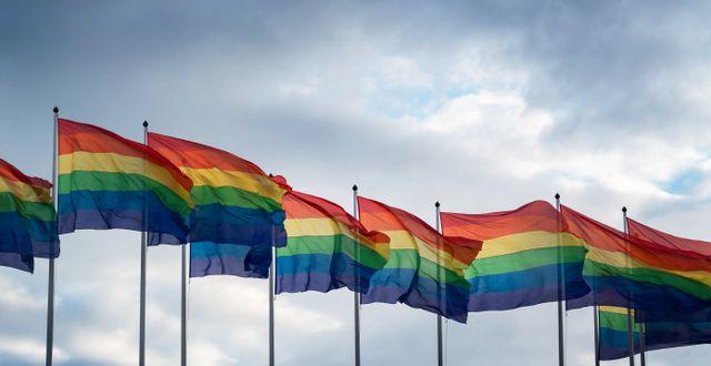 Prideflaggor.  Stina Stjernkvist/TT / TT NYHETSBYRÅN