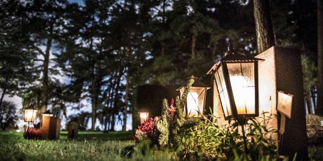 Skogskyrkogården i Stockholm där Branislav ligger begravd. Tomas Oneborg/SvD/TT / TT NYHETSBYRÅN