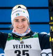 Ebba Andersson.  JOHANNA LUNDBERG / BILDBYRÅN