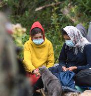 Migranter vid gränsen till Polen. Michal Kosc / TT NYHETSBYRÅN