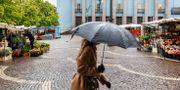 Kvinna med paraply i Stockholm.  Emma-Sofia Olsson/SvD/TT / TT NYHETSBYRÅN