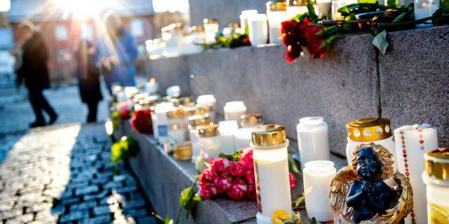 Blommor i Uddevalla. Adam Ihse/TT / TT NYHETSBYRÅN