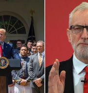 Donald Trump/Jeremy Corbyn. TT