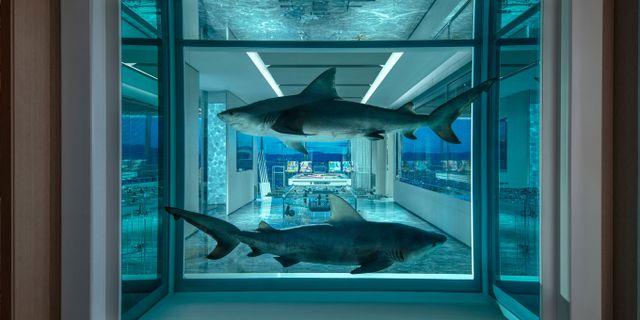 Damien Hirsts hajkonstverk Winner/Loser från 2018 faller troligtvis inte alla i smaken.  Palms Casino Resort