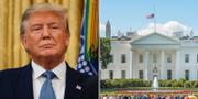 USA:s president Donald Trump samt en bild på Vita huset. Arkivbilder. TT