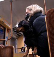 Kvinnor i munskydd på tunnelbana Janerik Henriksson/TT / TT NYHETSBYRÅN