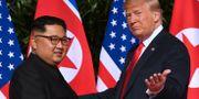 Trump och Kim vid deras tidigare möte. SAUL LOEB / AFP