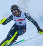Anna Swenn-Larsson  Alessandro Trovati / TT NYHETSBYRÅN