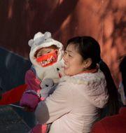 Föräldrar och barn i Peking. Ng Han Guan / TT NYHETSBYRÅN