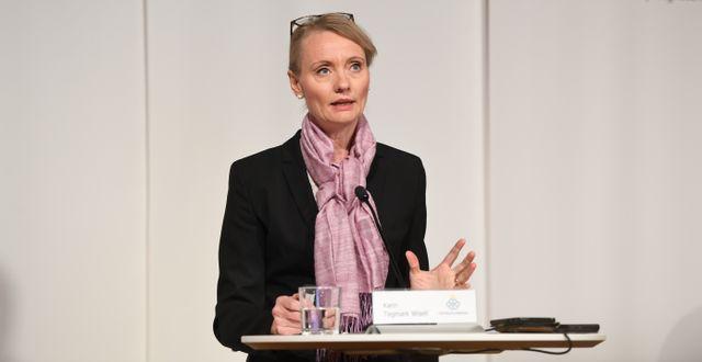 Karin Tegmark Wisell vid dagens pressträff. Fredrik Sandberg/TT / TT NYHETSBYRÅN
