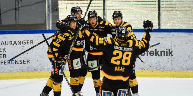 Skellefteå ångar på mot semifinal Erland Segerstedt/TT / TT NYHETSBYRÅN