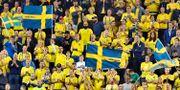 Svenska fans på Friends Arena i matchen mellan Sverige-Turkiet i Nations League. Claudio Bresciani/TT / TT NYHETSBYRÅN
