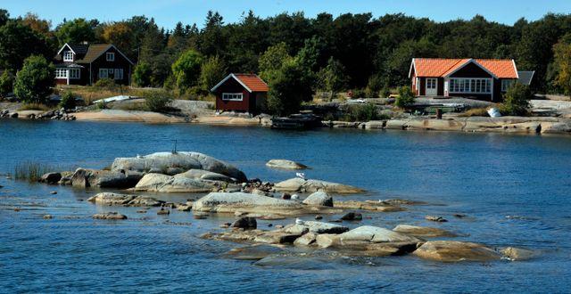 Rödlöga i Stockholms skärgård. Illustrationsbild. Hasse Holmberg / TT / TT NYHETSBYRÅN