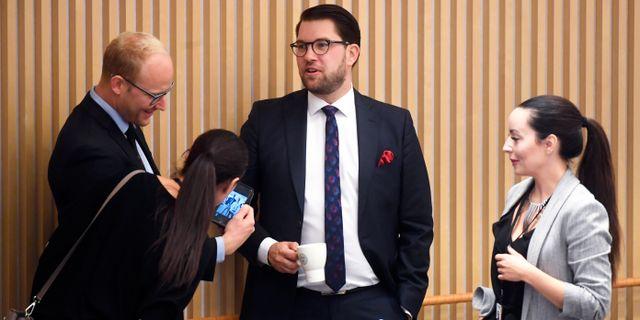 Jimmie Åkesson (mitten) i riksdagen idag. Fredrik Sandberg/TT / TT NYHETSBYRÅN