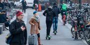 Elsparkscyklar i grannstaden Malmö. Arkivbild. Johan Nilsson/TT / TT NYHETSBYRÅN