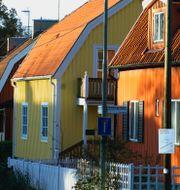 HASSE HOLMBERG / TT NYHETSBYRÅN