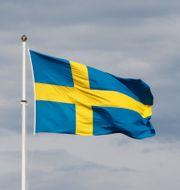 Svenska flaggan är hissad.  Erik Johansen / TT NYHETSBYRÅN