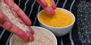 Vanligt ris och gyllene ris Wikipedia