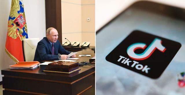 Vladimir Putin. TT.