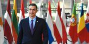 Spanien premiärminister Pedro Sanchez. Riccardo Pareggiani / TT NYHETSBYRÅN