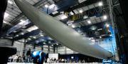 Vestas rotorbladsfabrik i Windsor, Colorado. Arkivbild. Jack Dempsey / TT / NTB Scanpix