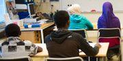 Nyanlända flyktingbarn undervisas på interkulturella enheten i Katrineholm. Arkivbild. FREDRIK SANDBERG / TT / TT NYHETSBYRÅN