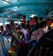 Flera har flytt konflikten till temporära läger.  Nariman El-Mofty / TT NYHETSBYRÅN