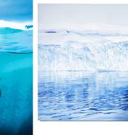 Den nya fartygsbaserade utställningen Change kommer bland annat att visa verk av fotografen Michael S. Nolan (vänster) och målningar av konstnären och utställningskuratorn Zaia Forman (höger). Michael S. Nolan/Haik Studio Inc