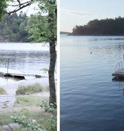 – Simkunnighet är en färskvara och att simma i öppet kallt vatten är en helt annan sak än att simma inomhus i en bassäng, säger Johan Eriksson på Trygg-Hansa. Trygg-Hansa
