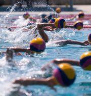 Amerikanska vattenpolo-laget tränar.  Jae C. Hong / TT NYHETSBYRÅN