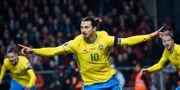 Zlatan gjorde mål i EM-kvalet mot Danmark. Jonas Ekströmer/TT / TT NYHETSBYRÅN