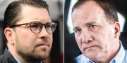 Jimmie Åkesson och Stefan Löfven. TT