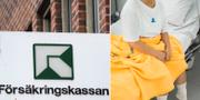 Försäkringskassan och sjuk kvinna. TT/Johan Nilsson/Claudio Bresciani