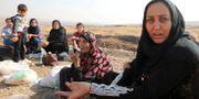 Syriska kurder sitter vid vägkanten nära gränsen mot Irak. Muhammad Hamed / TT NYHETSBYRÅN