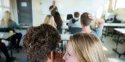 Elever i ett klassrum/illustrationsbild.  Roald, Berit / TT NYHETSBYRÅN
