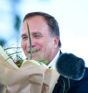 Stefan Löfven (S).  Henrik Montgomery/TT / TT NYHETSBYRÅN