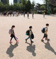 Skolbarn i Sydkorea Lee Jin-wook / TT NYHETSBYRÅN