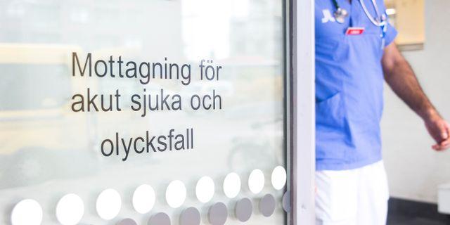 Illustrationsbild. isabell Höjman/TT / TT NYHETSBYRÅN