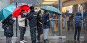 En säkerhetsvakt mäter temperaturen på besökare som köar utanför Apples butik i Peking inför att den skulle öppna på fredagen  Mark Schiefelbein / TT NYHETSBYRÅN