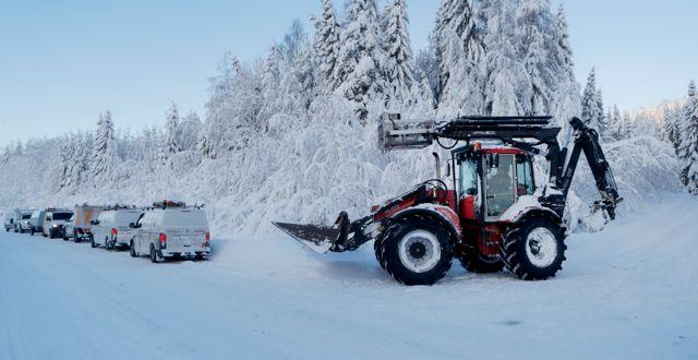 Snöfall i Sundsvall. Arkivbil Mats Andersson/TT / TT NYHETSBYRÅN