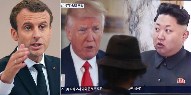 Emmanuel Macron och Donald Trump samt Kim Jong-Un. TT