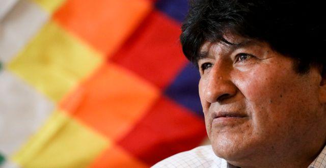Evo Morales i Argentina, där han nu bor, den 17 februari i år. Natacha Pisarenko / TT NYHETSBYRÅN