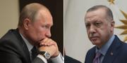 Vladimir Putin / Recep Tayyip Erdogan TT