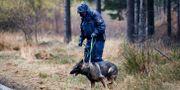 Kvinnan hittades död den 24 oktober förra året. Thomas Johansson/TT / TT NYHETSBYRÅN