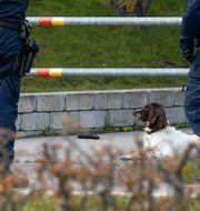 Polisinsats vid gripandet i april 2017 Johan Nilsson/TT / TT NYHETSBYRÅN