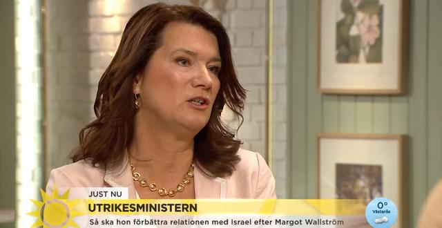 Utrikesminister Ann Linde (S). TV4