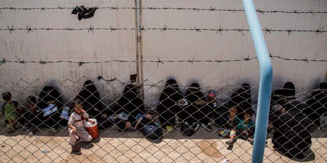 Kvinnor och barn som är släktingar till IS-anhängare i lägret al-Hol i Syrien. Baderkhan Ahmad / TT NYHETSBYRÅN