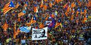 Separatistdemonstration till stöd för de åtalade katalanska ledarna i Madrid.  Juan Medina / TT NYHETSBYRÅN