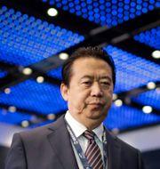 Meng Hongwei. Wong Maye-E / TT NYHETSBYRÅN/ NTB Scanpix